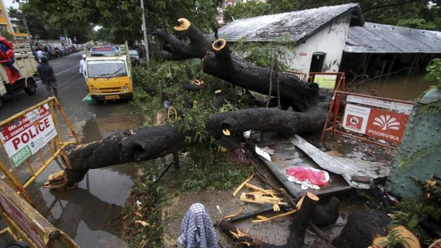 A tree that fell collapsing a compound wall in Chennai on November 25. Life also came to a standstill as howling winds damaged electric poles and interrupted electricity supply in several parts of Chennai and other districts. Hundreds of trees were uprooted. (R. Parthibhan / AP)