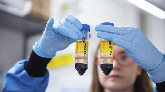 A researcher in a laboratory at the Jenner Institute in Oxford, England, works on the coronavirus vaccine developed by AstraZeneca and Oxford University.(AP)
