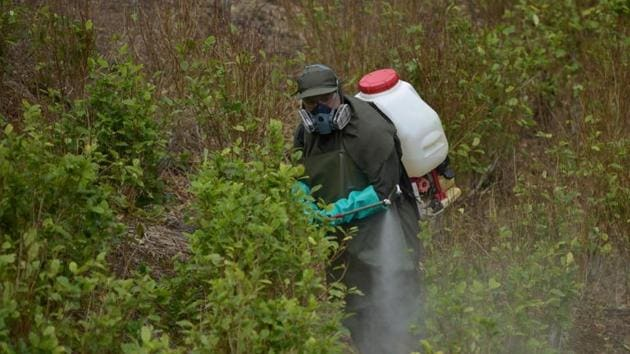 Intense awareness about Glyphosate in local languages is key(AFP (Representative Image))
