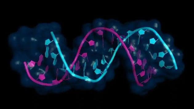 The way proteins, one of the building blocks of life, fold drives their functionality and behaviour. For instance, SARS-Cov-2 has a protein that folds as a spike.(File photo for representation)