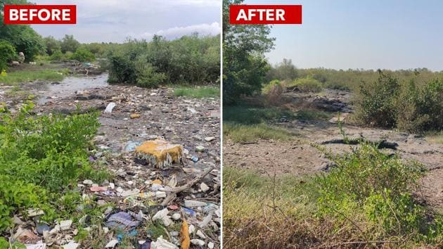 A combination photograph showing the Navi Mumbai mangrove patch before and after it was cleaned.(Photo: Environment Life)