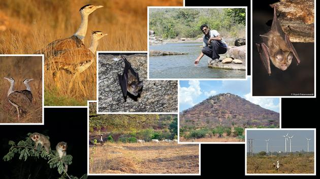 Through various initiatives, The Habitats Trust works to empower on-ground conservationists and organisations in India.(The Habitats Trust)