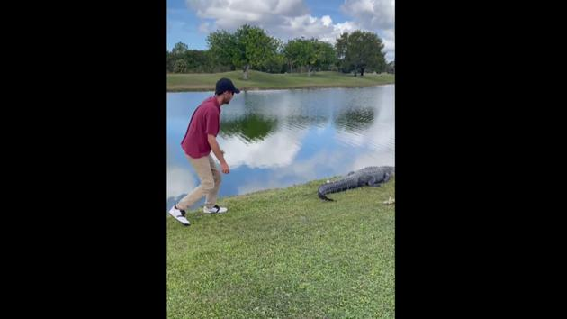 The image shows the man approaching the alligator.(Facebook/@Kyle Downes)