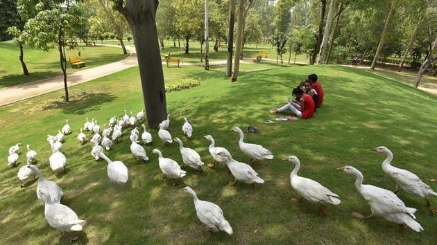 Sanjay Lake Park in New Delhi.(Raj K Raj/HT archive)