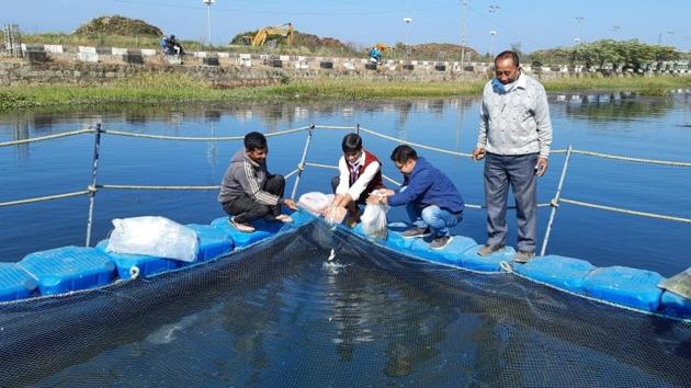 Pengba fishery cages have been installed in Takmu waterbody at Sendra under Bishnupur district in Manipur.(HT photo)