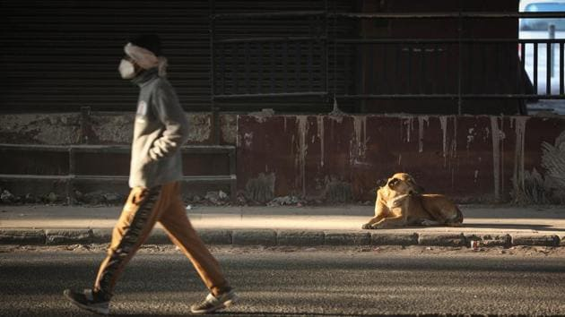 A man walks past a dog basking in the sun at Shadipur on a winter morning in New Delhi on December 25. Kuldeep Shrivastava, who heads the Regional Weather Forecasting Centre, said in a report that an approaching Western Disturbance may cause light rain in Delhi on December 27 following which temperatures are likely to fall again. The IMD forecasts snow in Kashmir, Ladakh and parts of Himachal Pradesh and Uttarakand on December 27 and 28. (Sanchit Khanna / HT Photo)