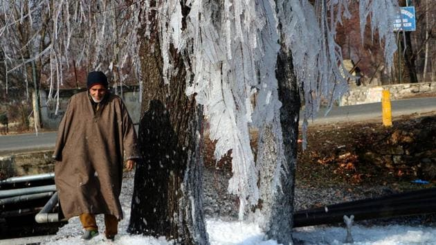A man walks beside the icicles hanging from a tree, at Pahalgam in South Kashmir on December 25. The IMD declares a cold wave when the minimum temperature is 10 degrees Celsius or below and is 4.5 notches less than normal. (ANI)