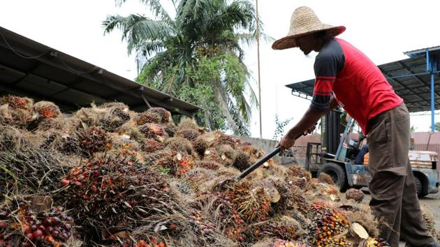 The US imported USD 410 million of crude palm oil from Malaysia in fiscal year 2020, representing a third of the total value shipped in.(Reuters file photo. Representative image)