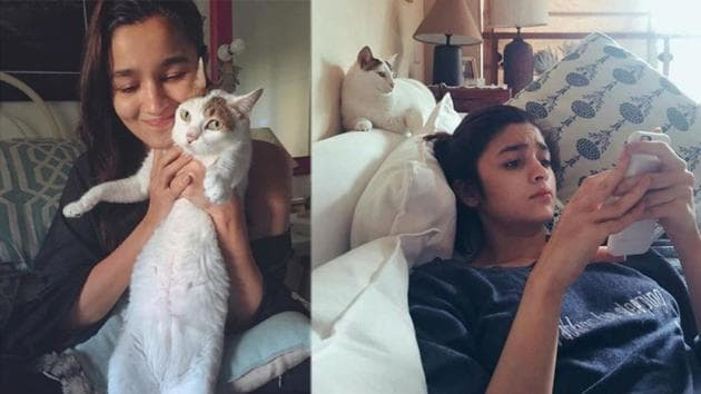 Alia Bhatt has shared pictures with her late cat, Sheeba.