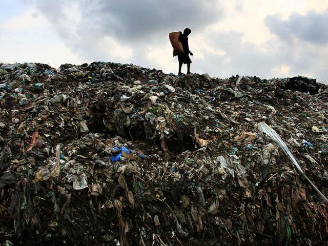 Delhi: Garbage crisis reaches tipping point