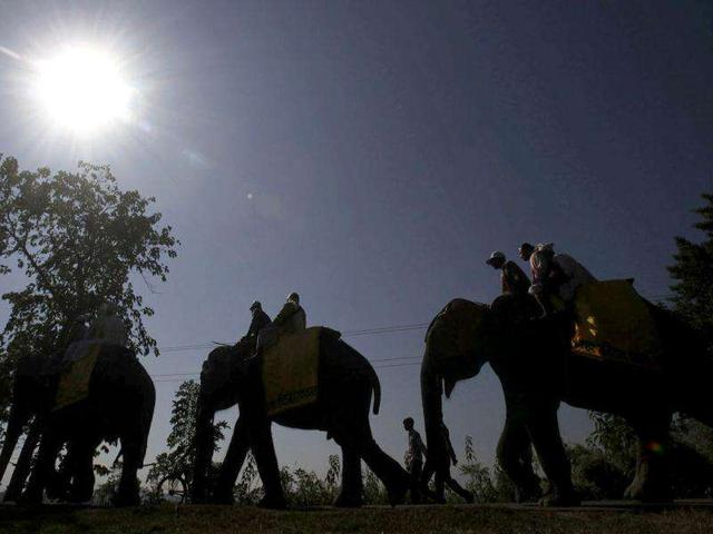 Assam's village of magic now more of a tourist hotspot