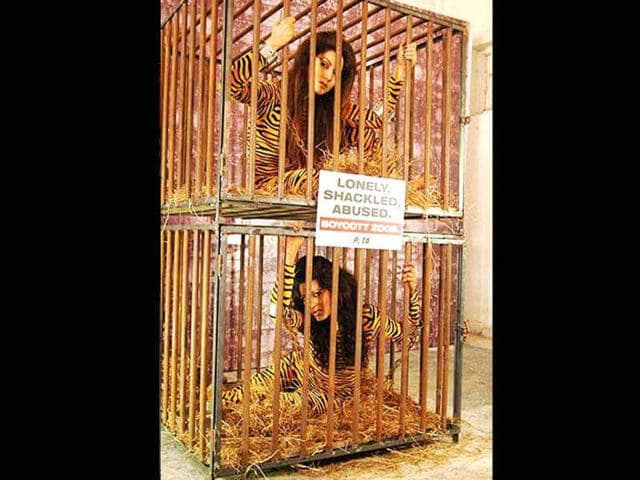 You-can-t-tame-these-wild-cats-Khan-sisters-Gauhar-and-Nigar-protest-for-animal-rights-by-posing-for-PETA-Here-s-a-look-Photo-Courtesy-desi-radio