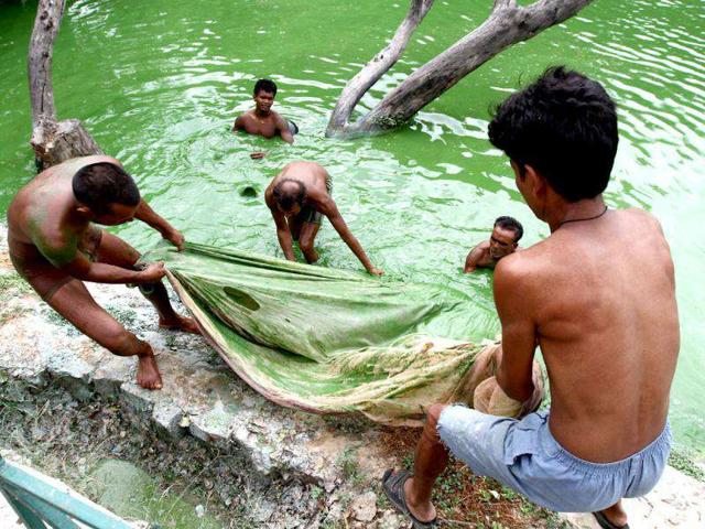 During-the-development-of-the-Hauz-Khas-Village-the-Delhi-Development-Authority-DDA-had-blocked-the-inlets-to-the-reservoir-leaving-the-lake-dry-for-many-years-HT-Photo-by-Jasjeet-Plaha
