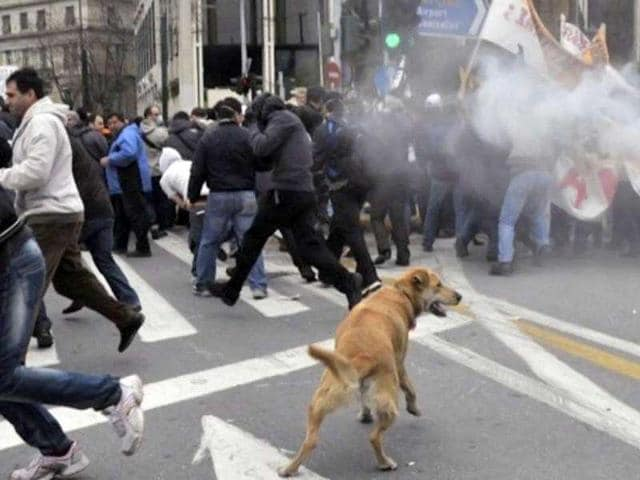 Protestors-escape-tear-gas-during-clashes-which-broke-out-at-the-massive-protest-march-in-Athens-Greece-is-hit-with-another-general-strike-against-austerity-as-Prime-Minister-George-Papandreou-seeks-to-convince-the-cash-strapped-country-s-eurozone-partners-to-extend-the-repayment-of-a-massive-rescue-loan-AFP-Photo-Louisa-Gouliamaki