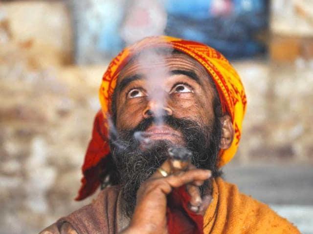 Fatehgarh Sahib,marijuana,drugs