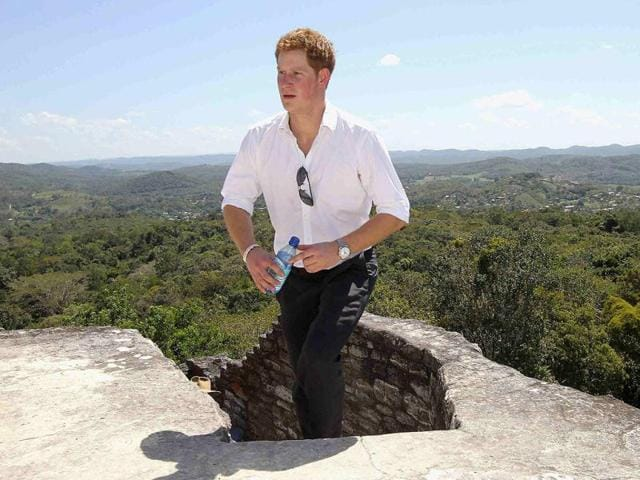 Prince HArry,Nude scandal,royal family