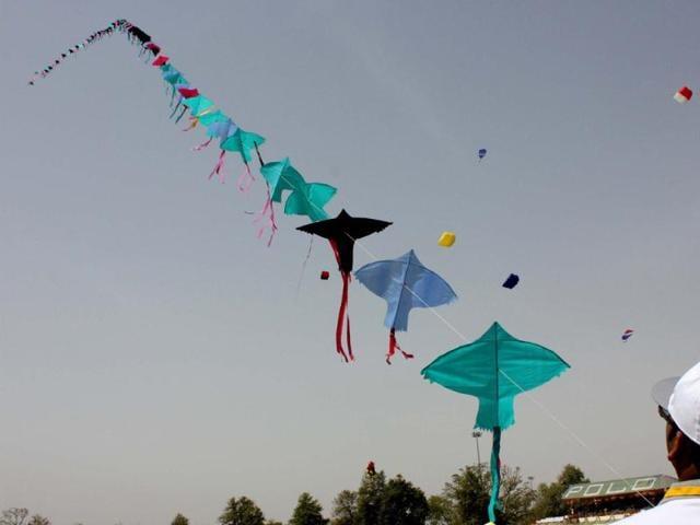 Kites,kite flying,kite festival