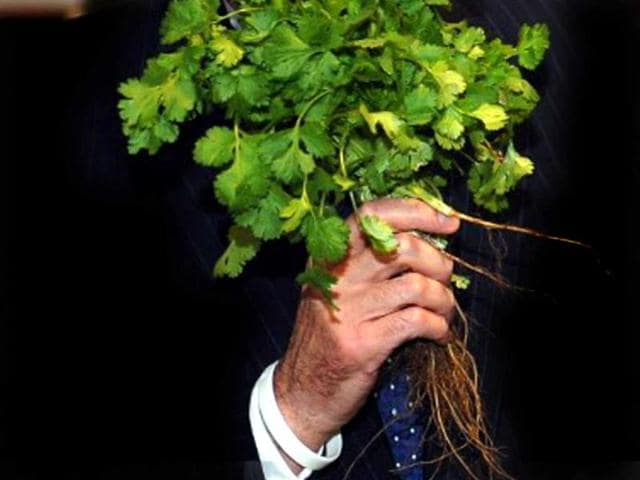 A-bunch-of-coriander-leaves-AFP