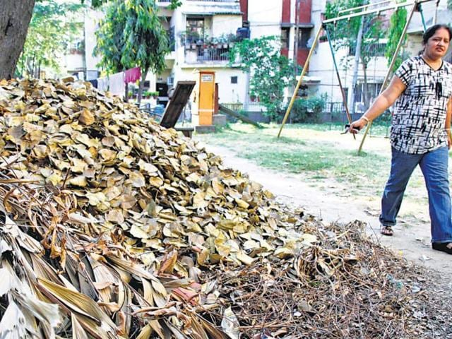 Dry-leaves-and-waste-scattered-in-parks-make-the-morning-walks-not-so-pleasant-at-Masjid-Moth-New-Delhi--ARIJIT-SEN-HT-photo