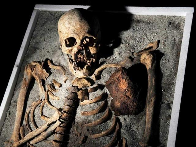 A-skeleton-with-an-iron-piece-before-being-exposed-at-the-National-History-museum-in-Sofia-The-ancient-skeleton-of-a-man-pinned-down-in-his-grave-in-order-not-to-turn-into-a-vampire-piqued-interest-in-Bulgaria-this-week-where-vampire-tales-and-rites-still-keep-their-bite-even-nowadays-The-700-year-old-skeleton-unearthed-in-the-necropol-of-a-church-in-the-Black-Sea-town-of-Sozopol-earlier-in-June-was-stabbed-in-the-chest-with-an-iron-rod-and-had-his-teeth-pulled-before-being-put-to-rest-AFP-Nikolay-Doychinov