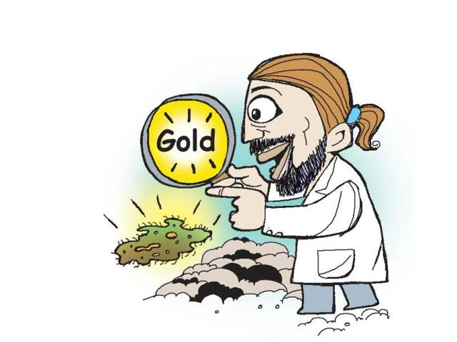 Bacteria-that-can-produce-gold