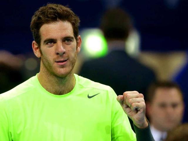 Del Potro to face Haas in ATP Washington semis