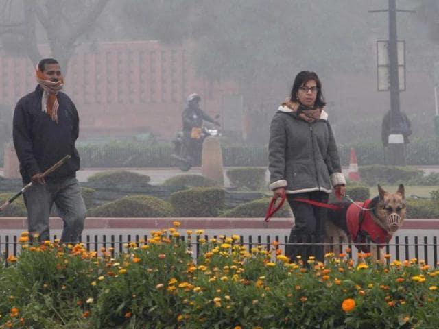Cold,Punjab,Haryana rains