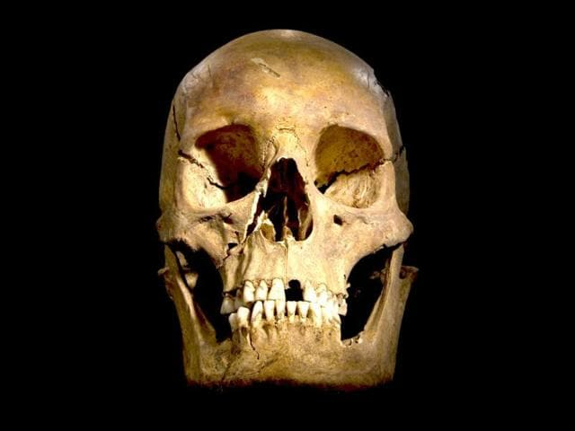 A-handout-picture-released-from-the-University-of-Leicester-shows-the-full-skull-of-the-skeleton-of-the-English-King-Richard-III-found-at-the-Grey-Friars-Church-excavation-site-in-Leicester-AFP-photo