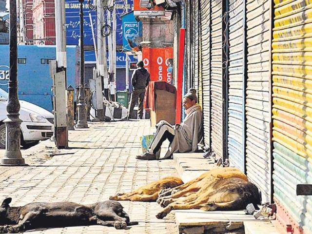 The-second-day-of-a-strike-called-by-Kashmir-Hurriyat-leader-Syed-Ali-Gilani-in-Kashmir-to-protest-the-execution-of-Afzal-Guru-in-New-Delhi-saw-deserted-streets-on-Sunday-AFP-Photo
