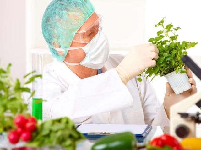 Check-1-2-3-Food-technologists-determine-the-quality-of-food-which-is-released-in-the-market-They-also-look-after-the-storage-conditions-and-hygiene