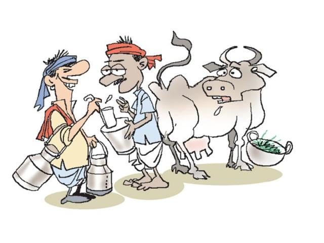 Jharkhand village that doesn't milk its cows