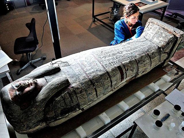 Archaeology,fossils,foodgrains