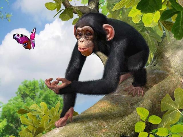 Zoo Tycoon,Xbox One,Electronic Entertainment Expo