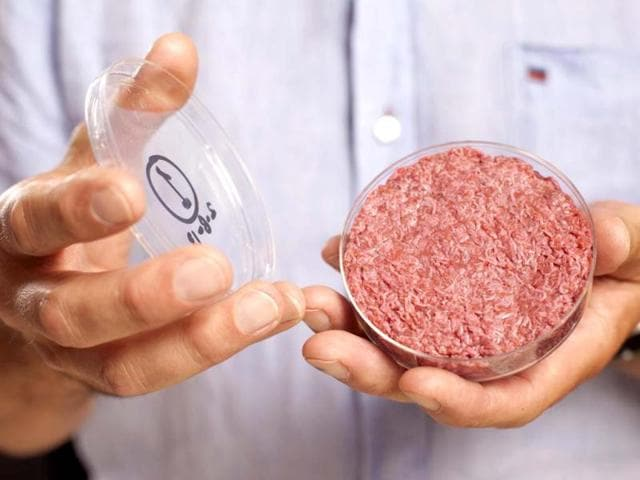 beef burger,food revolution,test-tube
