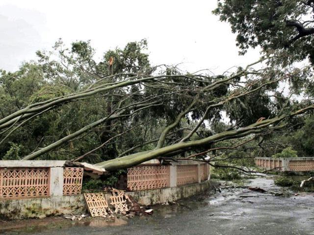 Cyclone,Phailin,Odisha