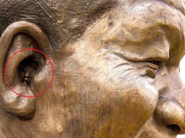 rabbit in mandela's ear,South Africa,nelson mandela