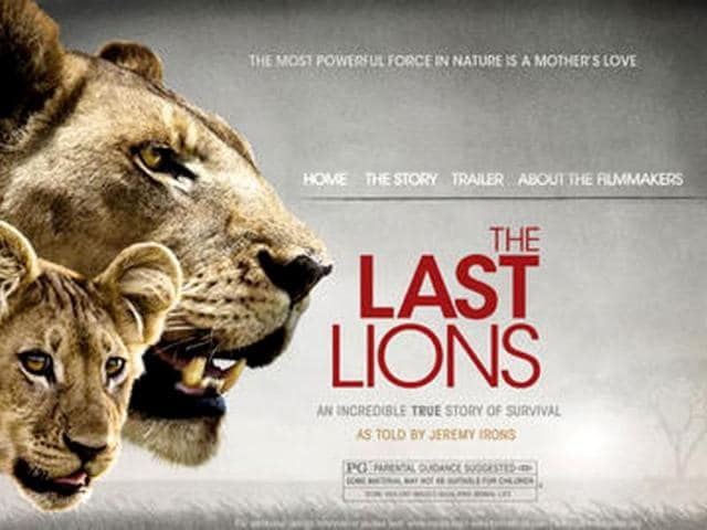 A-still-from-the-film-The-Last-Lions