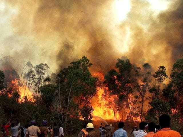 Fire-personnel-douse-the-blazing-fire-at-Tirumala-forest-in-Tirupati-on-the-second-day-PTI-Photo