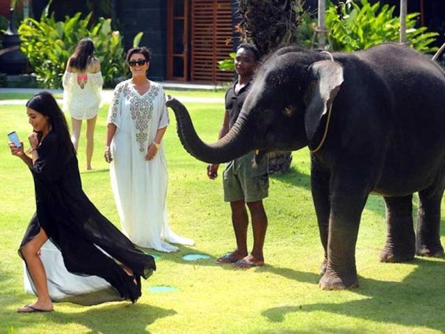 And the after effects. Baby elephant scared Kim away. (PHOTO COURTESY: Twitter/ @KimKardashian)