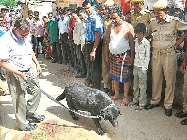Police-officials-conduct-an-inspection-at-the-site-where-a-calf-was-killed-in-Surajpole-on-Friday-HT-Photo