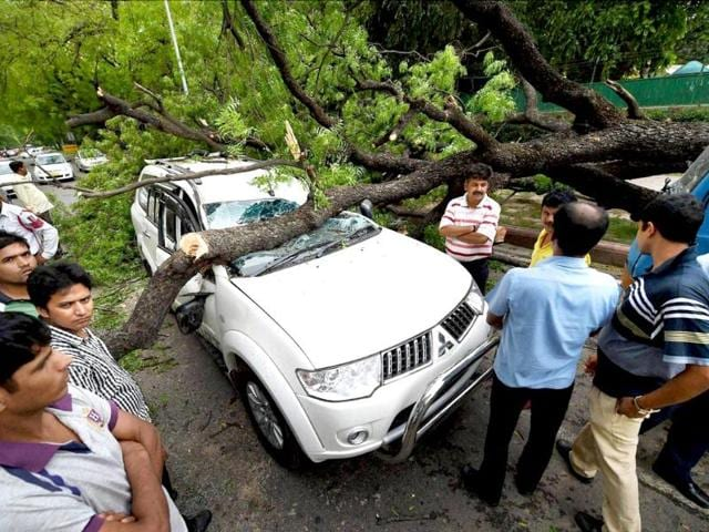 People look on as a tree branch fell on a car outside Gymkhana club after a storm accompanied by dark clouds in New Delhi. (PTI photo)