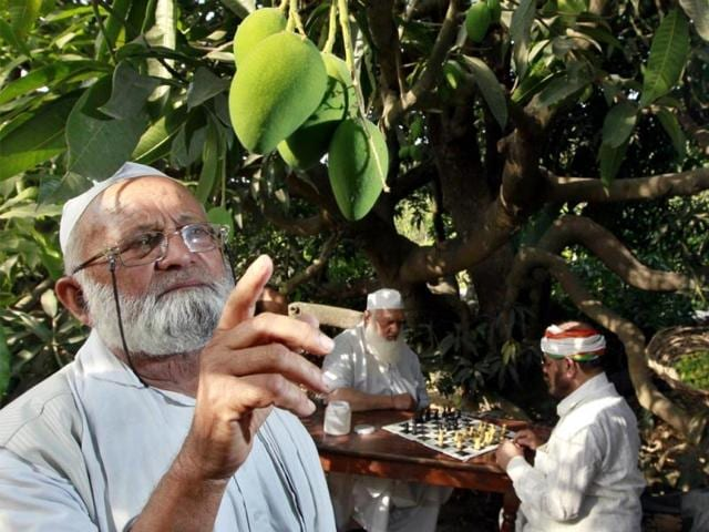 Malihabad In The Land Of Famous Dussehri Mangoes Brunch