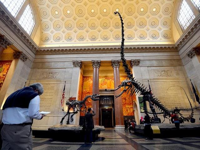 The-American-Museum-of-Natural-History-in-New-York-AFP