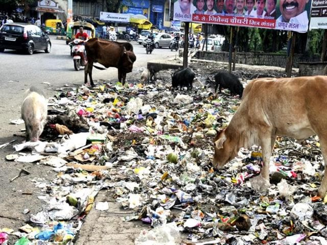 Indore,garbage,monsoon