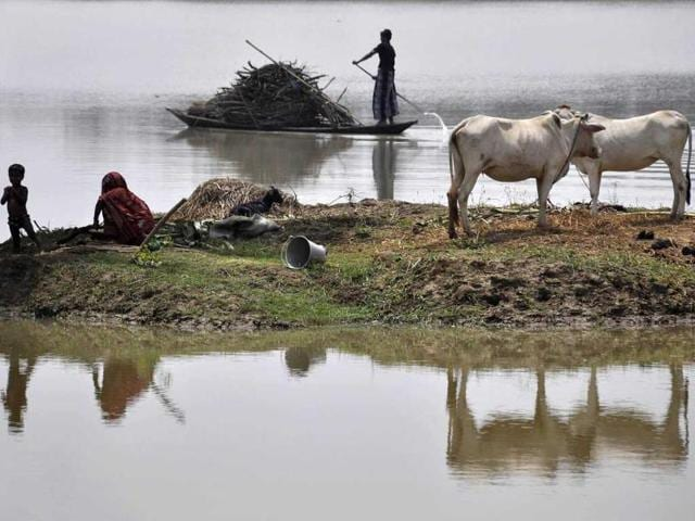 A villager uses a boat to transport firewood through floodwaters as a resident and child sit alongside cattle on partially submerged farmland at Buraburi village in the Morigaon district, Assam. (AFP Photo)