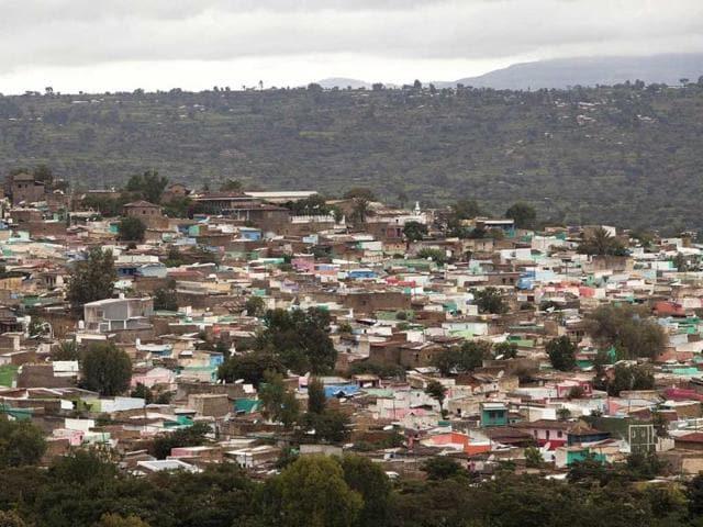 Hyena,Islam,Ethiopia