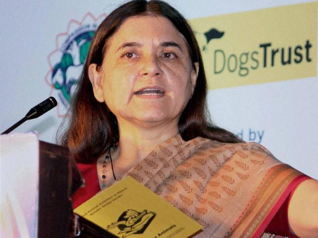 Union minister Maneka Gandhi has urged US President Barack Obama to skip Spain's annual 'Running of the Bulls' during his proposed visit.