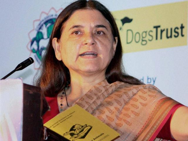 All violence is male-generated: Maneka Gandhi