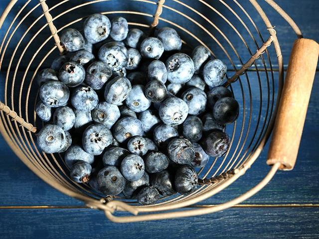 Wild blueberries can neutralise a high-fat diet