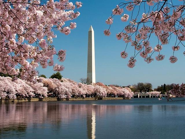 travel,singapore,Washington DC